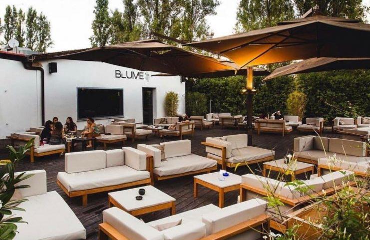 Blume Lounge-Roma 7